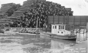 Logs in flood, 1943.  Courtesy of Benton County Historical Society.