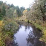 Fall colors on Middle Marys River, below Wren.