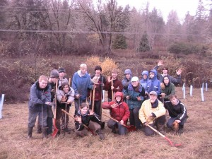 Large group of students planting trees.
