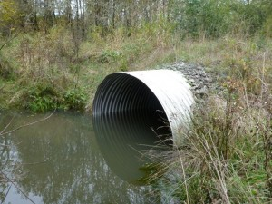 A beaver dam has created beneficial back-watering of the culvert outlet.