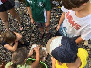 Kids building a model.