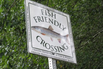 Fish Friendly Crossing