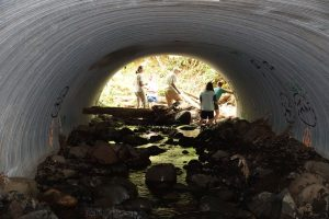 Kids in a culvert.