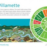 Willamette River Report Card Dec2015